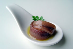 Cantabrian anchovy
